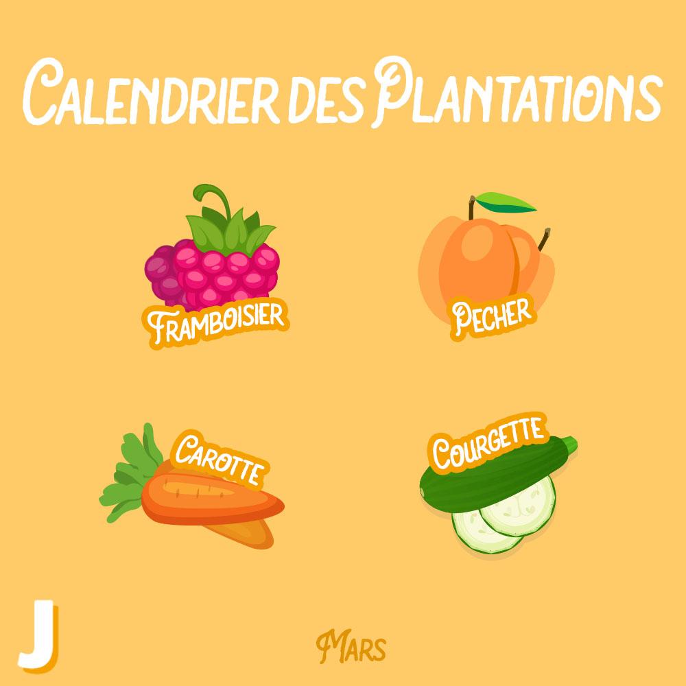 plantations